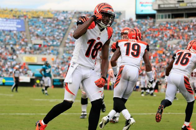 Miami Dolphins vs. Cincinnati Bengals: Bold Predictions for Each Team
