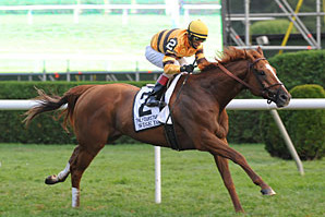 Shadwell Turf Mile Stakes 2012: Breaking Down the Favorites in Lexington