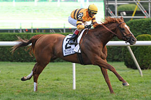 Shadwell Turf Mile Stakes Results 2012: Wise Dan's Win Proves Breeders Cup Merit