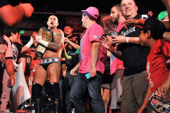 CM Punk Punches Fan: Poor Decision Shouldn't Alter Current WWE Standing
