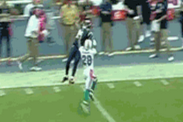 Rams WR Brandon Gibson Makes Catch of the Season vs. Dolphins