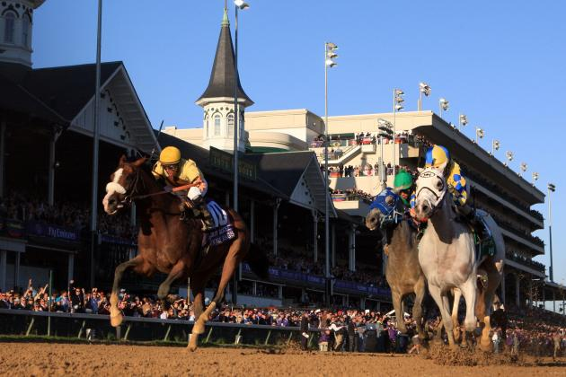 Breeders' Cup 2012: Early Odds for Race Favorites