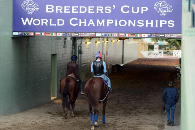 Breeders' Cup Draw 2012: Post Positions, Field and Race Preview