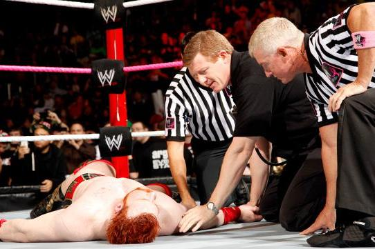 Why WWE Made the Right Call with Sheamus and Big Show