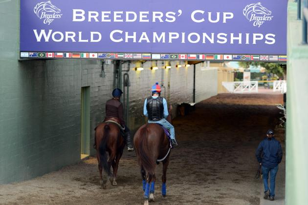 2012 Breeders' Cup: Post Times, TV Schedule, Post Positions Info