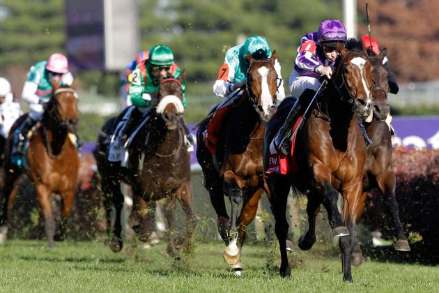 Breeders' Cup 2012 Odds: Early Lines for Turf Race
