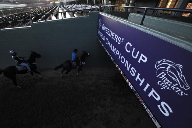 Breeders' Cup Predictions 2012: Last-Minute Picks and Odds for Santa Anita Race