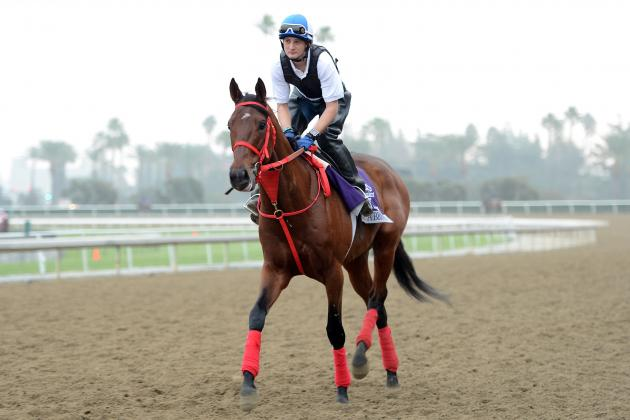 Breeders' Cup 2012 Post Time: Where and When to Catch All the Action