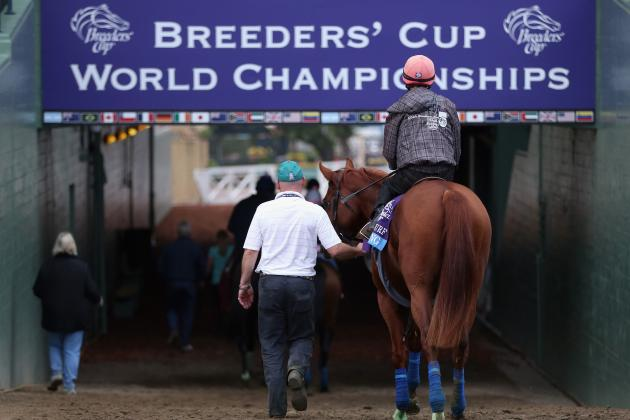 Breeders' Cup 2012 Live Stream: Online Viewing Info and More