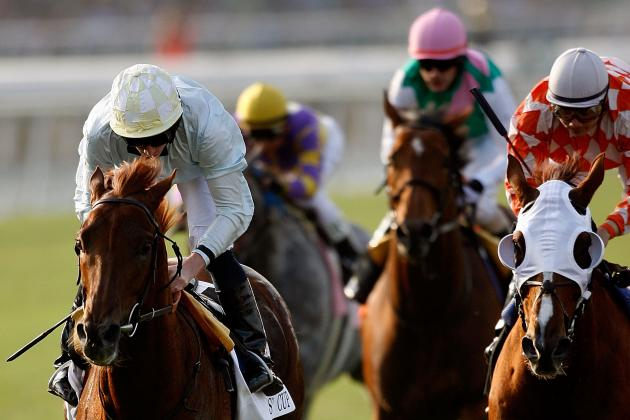 Breeders' Cup 2012: Analysis and Preview of the $3 Million Turf