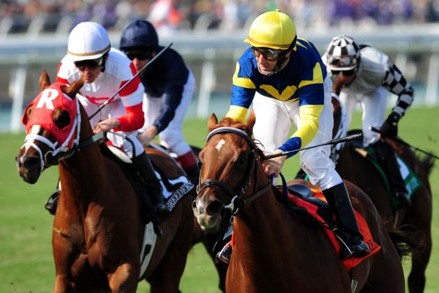 Breeders' Cup 2012: Analysis and Preview of the $2 Million Turf Mile