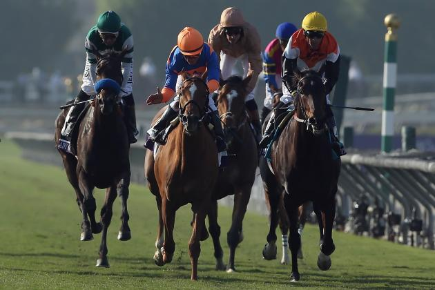Breeders' Cup 2012 Results: Complete Win, Place and Show for Friday