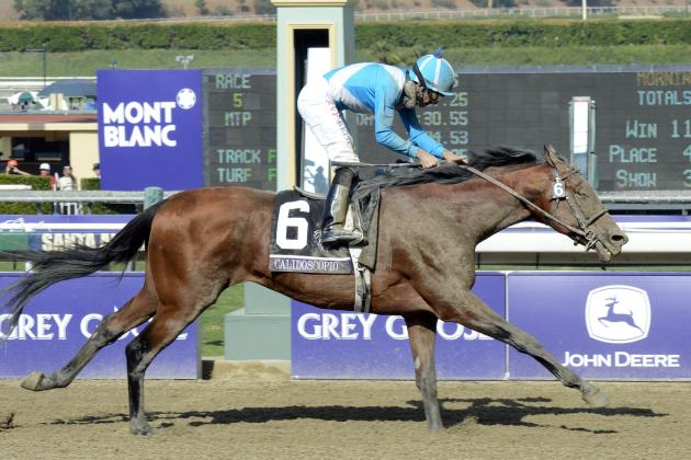 Breeders Cup 2012 Winners: Most Impressive Showings from Day 1