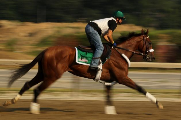 Mucho Macho Man: Why Promising Colt Will Win Breeders' Cup Classic