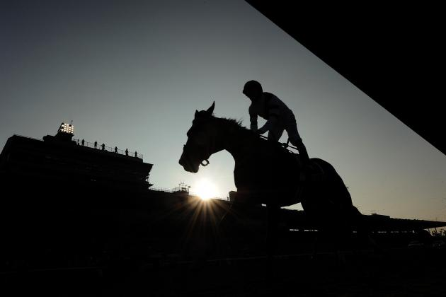 Breeders' Cup 2012 TV Schedule: Complete Coverage Guide for Final Races