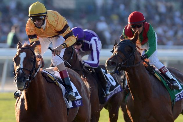 Breeders' Cup 2012 Results: Wise Dan Wins the Mile in Sensational Fashion