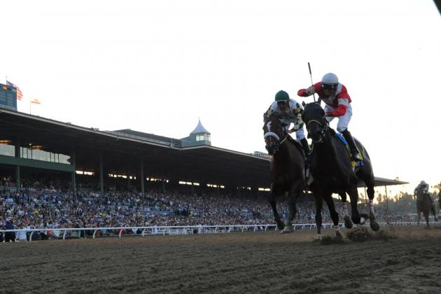 Breeders' Cup Classic 2012 Winner: Fort Larned Dominates America's Richest Race