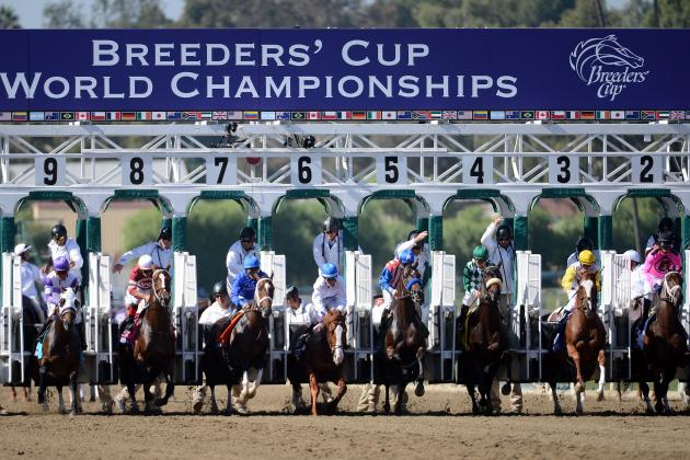 Breeders' Cup 2012 Results: Complete Winners and Losers for Races