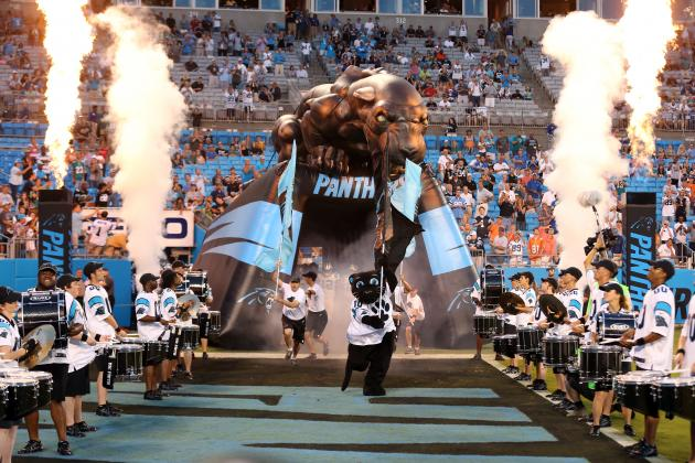 Chamber Chief: Potential Panthers Relocation 'Scares the Hell out of Me'