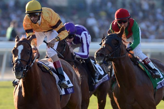 2012 Breeders' Cup Mile: Wise Dan Makes Case for Horse of the Year (Video)
