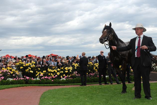 Green Moon Melbourne Cup 2012: Underdog Victor Will Enjoy Continued Success