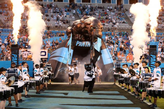 Carolina Panthers Stadium Could Gain State Interest