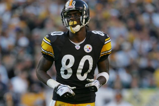 Pittsburgh Steelers: Why Brian Hoyer and Plaxico Burress Can Be Successful