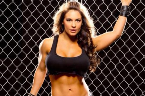 WWE Diva Kaitlyn Arrested at WWE Event