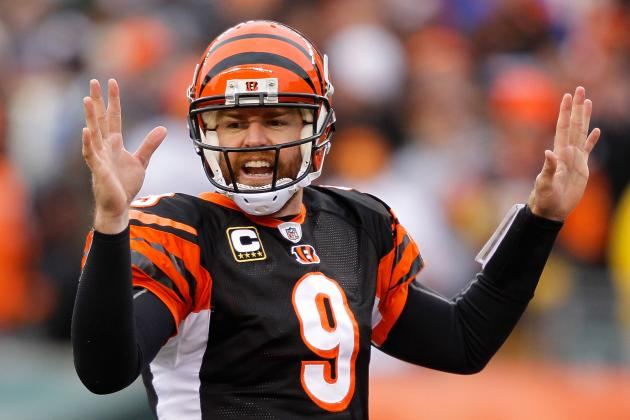 Bengals Can't Sell out Palmer Reunion