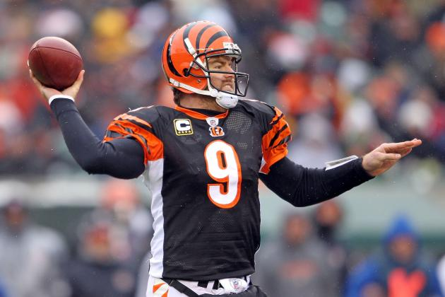 Bengals Fans Anticipate Return of Former QB Carson Palmer