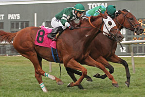 Philly Ace Runs by Favorite in G3 Tropical Turf