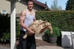 Kaepernick Has Pet Giant Tortoise
