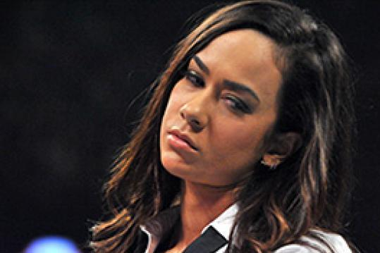 AJ Lee: The WWE's Most Dominant Performer in 2012