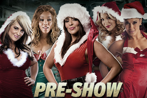 WWE TLC 2012: Divas Division Ends Year's PPV Calendar Relegated to Pre-Show
