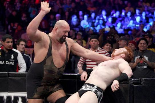 WWE TLC 2012 Results: Breaking Down Strangest Booking Decisions at Latest PPV