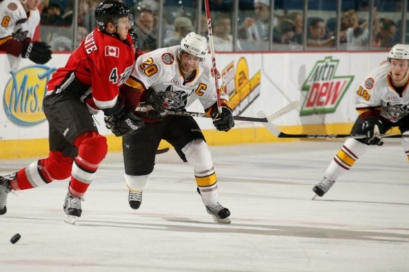 Chicago Wolves: December 17-23 Weekly Update