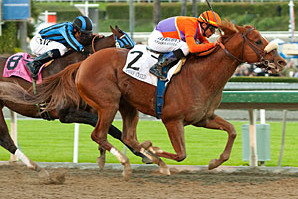 Jimmy Creed Opens Santa Anita with Malibu Win