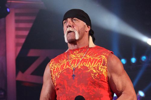 TNA Impact! Wrestling: Sting Returns, Hulk Hogan Suspends Bully Ray