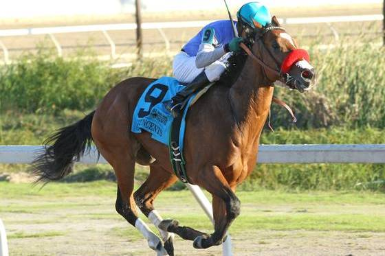 Sham Stakes: Goldencents Takes First Shot on the Kentucky Derby Trail