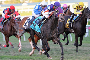 Ft. Lauderdale Stakes: Mucho Mas Macho Upsets the Field