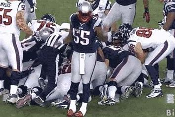 Brandon Spikes with the Turnover Dance