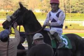 Eblouissante Could Be Stakes Bound After Second Win (Video)