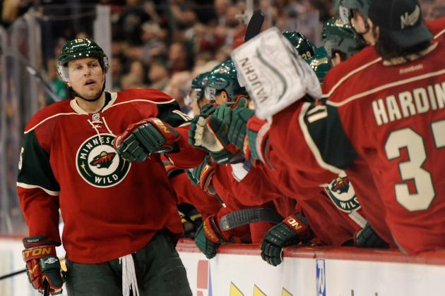 Wild vs. Red Wings - 01/25/2013
