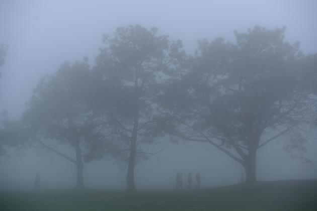 Tiger's Quest at Torrey Pines Delayed for Fog