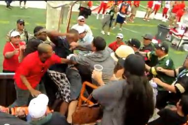 Crazy Fan Brawl Breaks out in Stands at the Pro Bowl