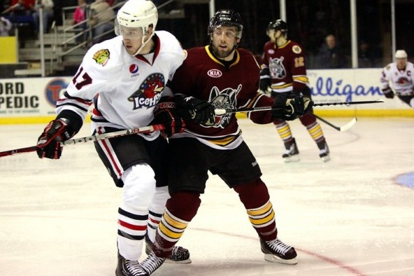Chicago Wolves: Jan. 21-27 Weekly Update