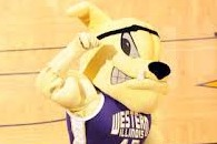 Mascot-Cheerleader Collision | VIDEO | SportsGrid