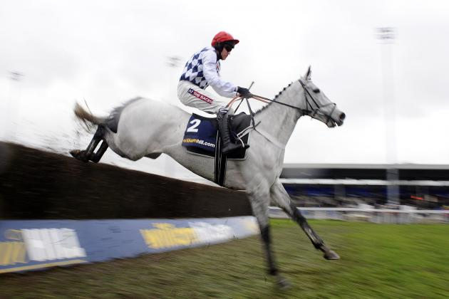 Henderson Reveals Simonsig Will Miss Key Cheltenham Festival Prep Race
