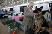 Westminster Dog Show 2013 Foolishly Courts Controversy with Judge Selection