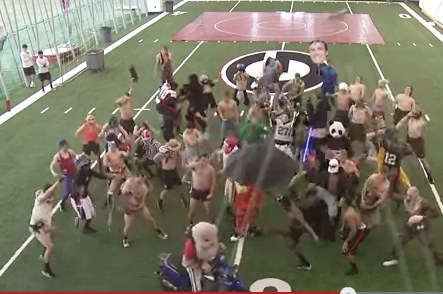 VIDEO: Georgia Football, Oregon'S Mascot Do the Harlem Shake